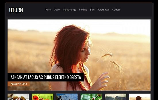 Highly_sophisticated_wordpress_theme