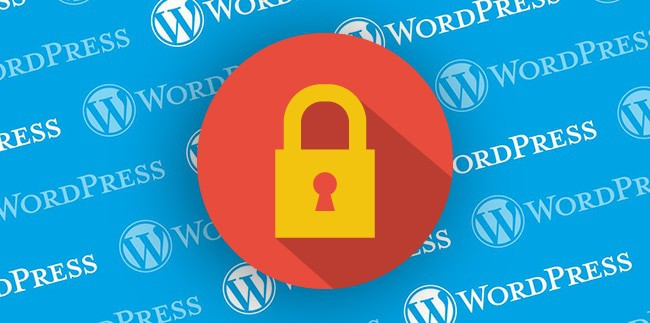 ssl wordpress